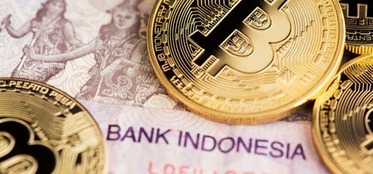 care este capacul potențial de piață al bitcoin)